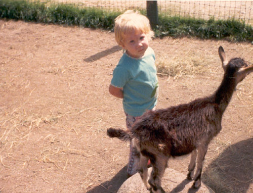 Alyce at the Petting Zoo