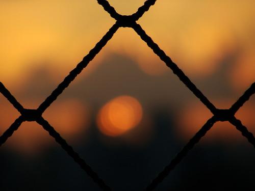 blur luz sol sunrise dof bokeh boke nascente foco doff felipepaim