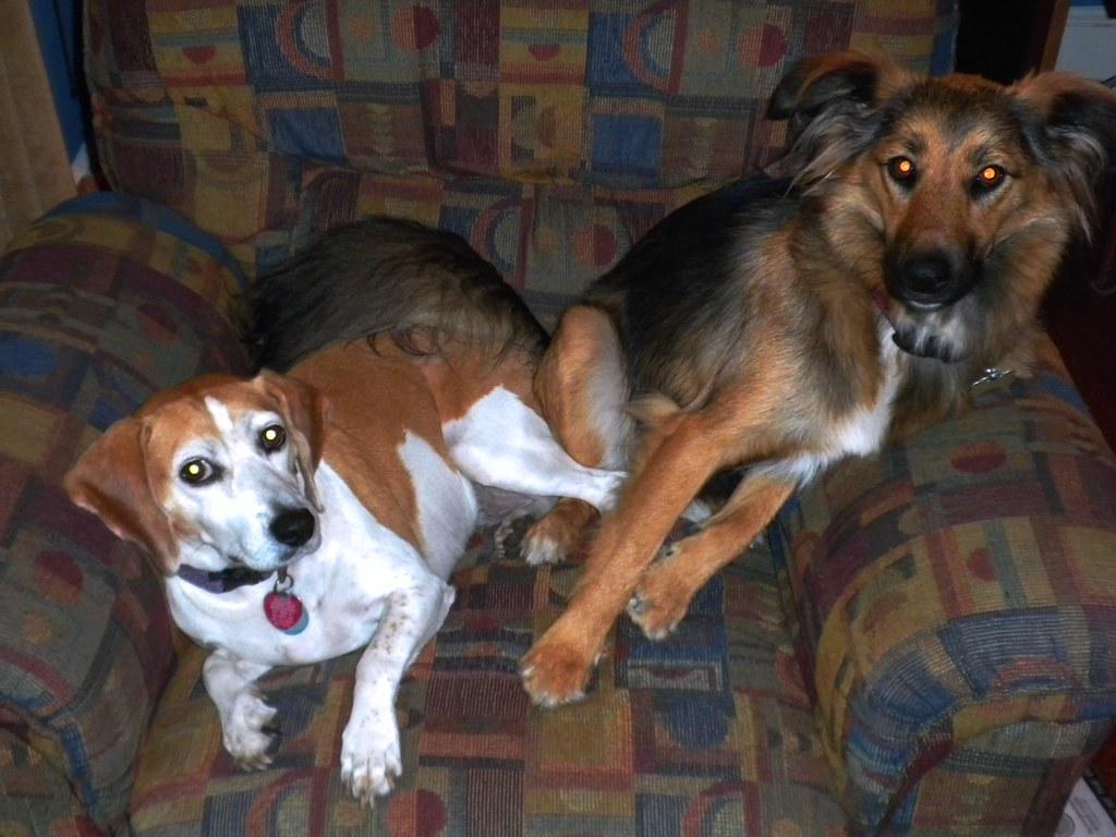 Rosie and Hannah