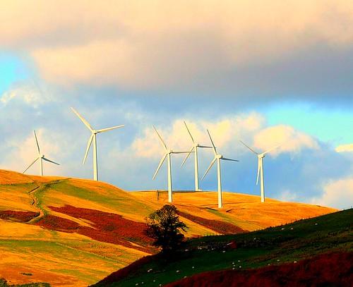 Glenlomond Windfarm | by B4bees