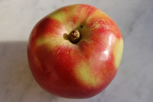 king david apple number 294 | by Alanna Risse