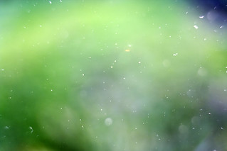 Dust, sun and polarizer + ext. tube | by kaibara87