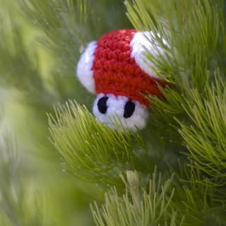 Mini Mario Mushroom | by Amy Dianna