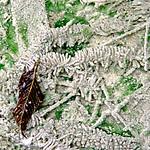 Ar-seeru-klaata-egle-Luznjugravis2-21aug03