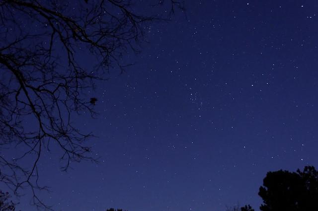 The Stars at Night - #9613