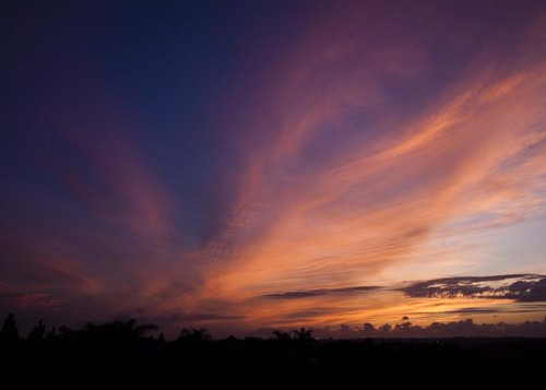 sunset color clouds reflections fan sandiego goldenhour