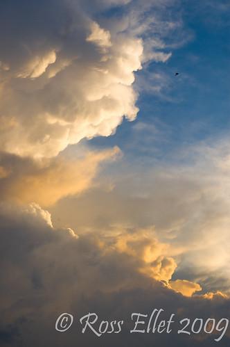 blue sunset sky cloud sun storm bird heaven august thunderstorm arkansas cumulonimbus arkansasthunderstorms