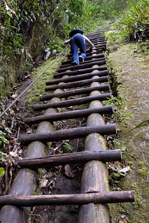 Pauline climbing wooden ladder on Putucusi   by jimmyharris