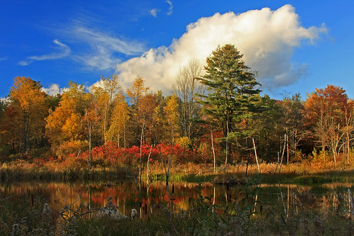 autumn fall foliage berkshires photographyrocks platinumheartaward absolutelystunningscapes vanagram
