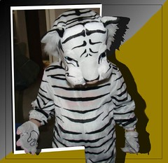 I am the tiger...