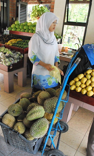 马来西亚水果 Malaysian Fruits, Bukit Gantang