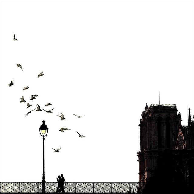 White Sunset ~ Notre Dame de Paris ~ MjYj