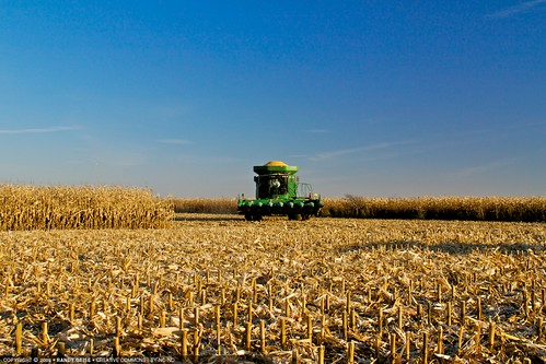 landscape corn afternoon unitedstates harvest alternativeenergy combine mn johndeer slayton ethanol cornharvest