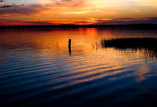 florida leesburg lakecounty littlelakeharris canonpowershotg11
