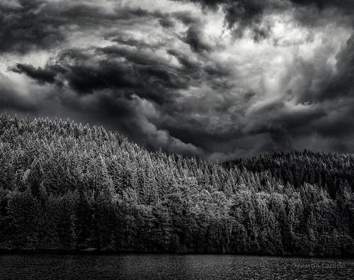 trees canada water monochrome clouds whistler britishcolumbia lakes parks storms squamish alicelake highway99 seatoskyhighway photoninja alicelakeprovincialpark niksoftware pentaxlife tamronlenses pentaxart pentaxk5 piccure
