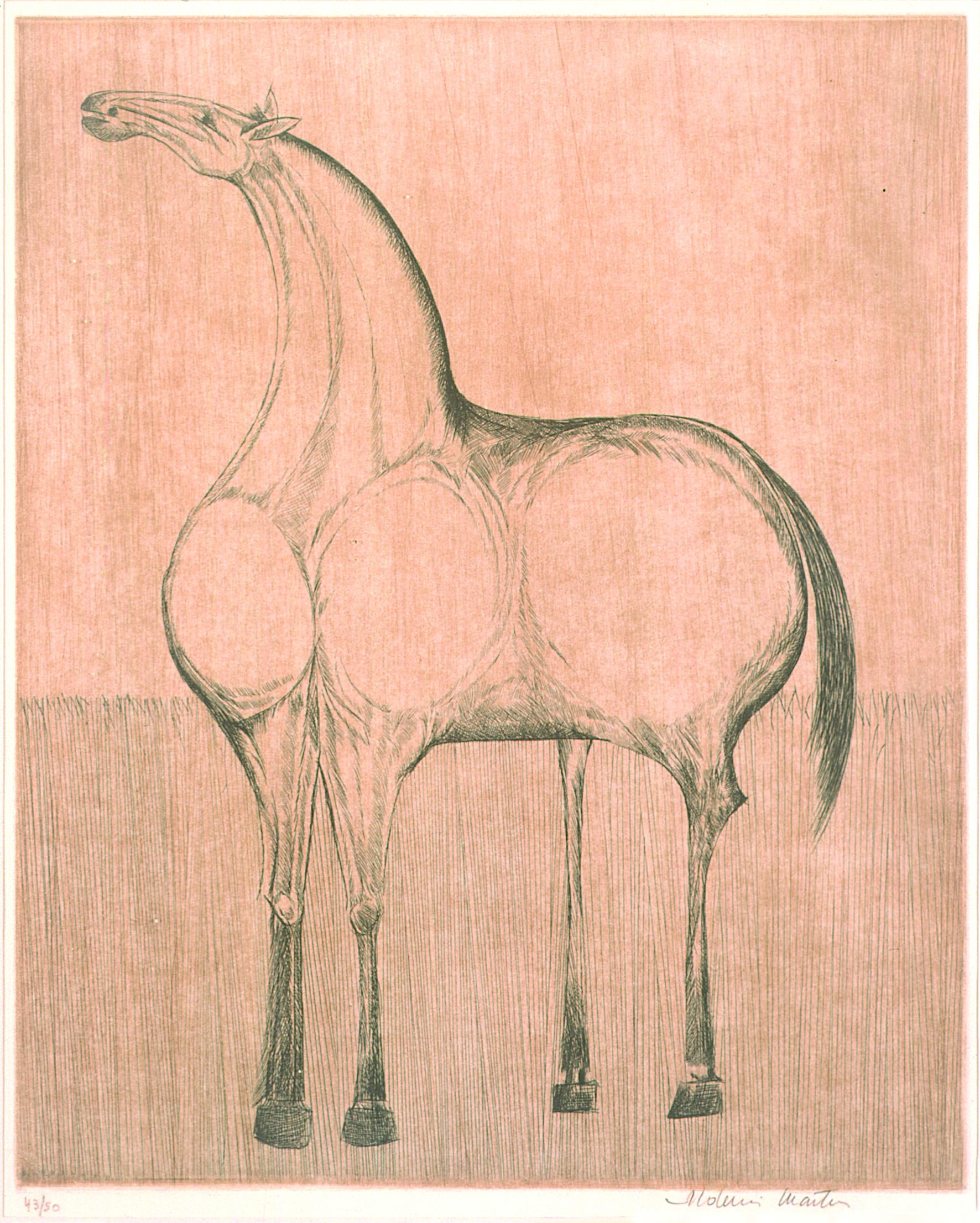 Cavalo Autor: Aldemir Martins Técnica: Calcografia. Água-forte Dimensão:50 cm x 40cm