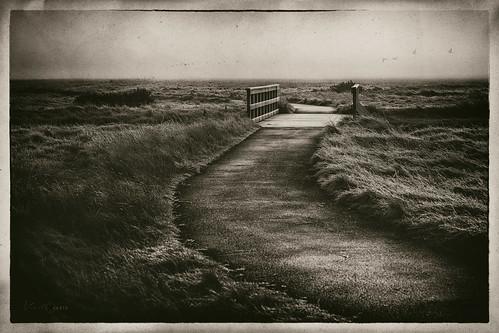sepia wetplate bw landscape englishlandscape path road nowhere kerto