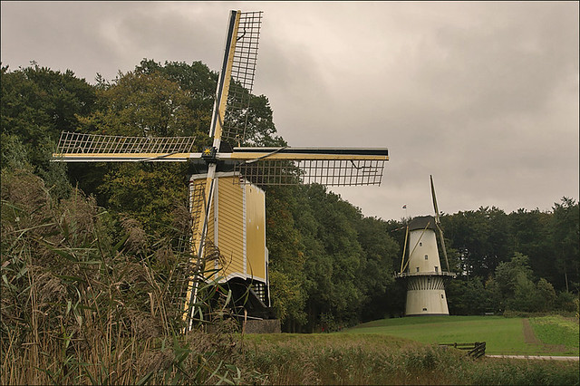 Dutch Windmills in Fall