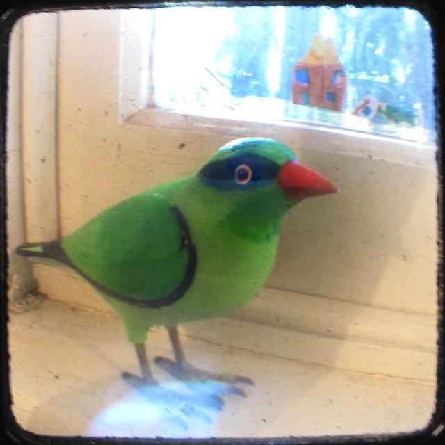 freaking awesome birdie doorbell