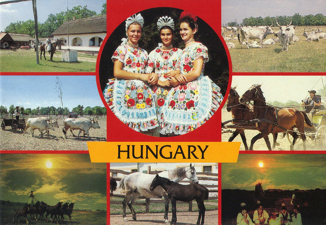 Country Life Hungary Multi-view Postcard