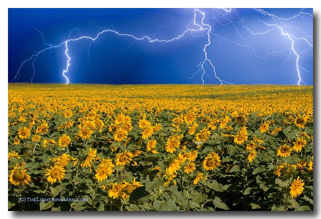 Thunderstorm on the horizon
