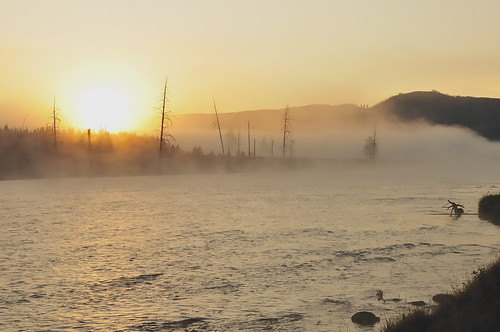 fog sunrise yellowstonenationalpark madisonriver