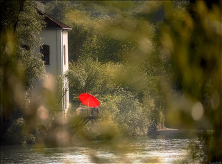 the red sun-umbrella..........
