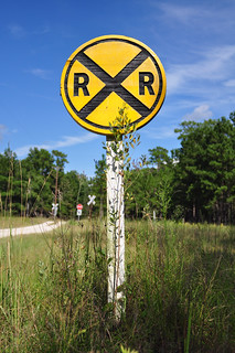 RXR | Railroad Crossing sign at Medway Plantation  | joel8x