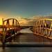 A Bridge Too Short by Vermin Inc