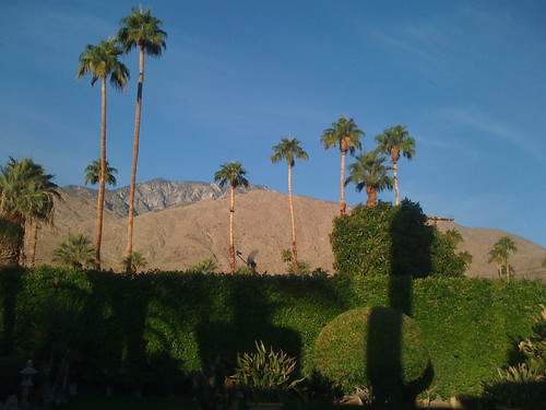 california sunrise palm springs sanjacinto