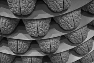 Brains   by christinahsu91