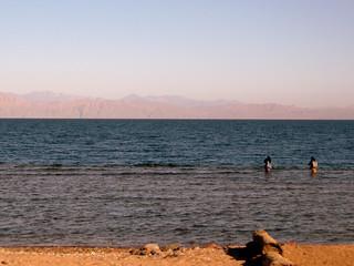 Bedouin women fishing for octopus