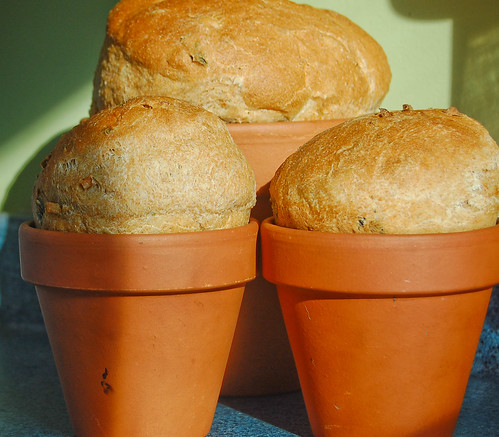 Flower Pot Herb Bread | by varresa