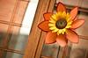 Flor molinillo