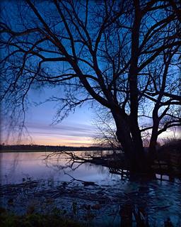 Winter Sunset, Willington in flood