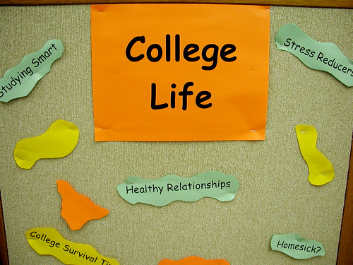 College Life Display (back display close-up) | by carmichaellibrary