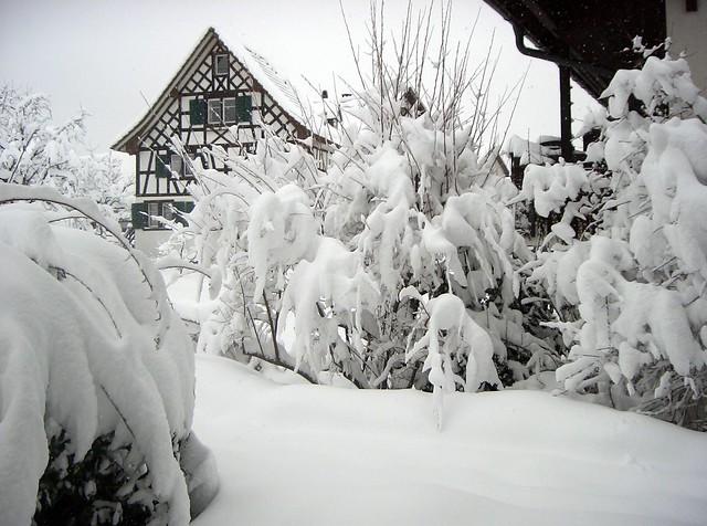 Oberrieden 5. März 2006