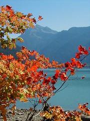 autumn mtn