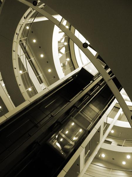 Previous Photo: Regent's Light