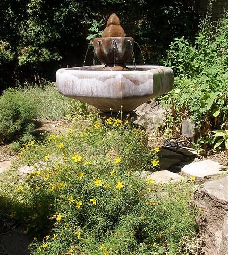 August Fountain