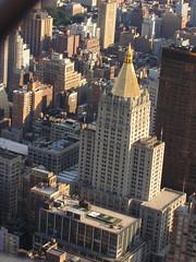 New York40