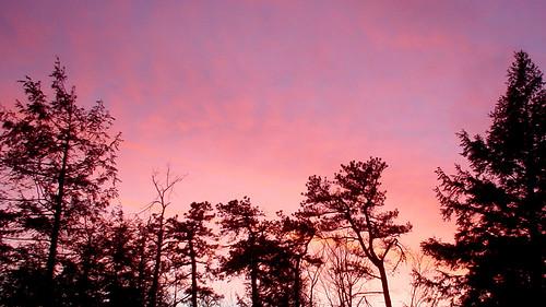 magenta sky lake minnewaska upstateny newyork ny nature ilovenature trees sunset dusk color colors clouds amazing poughkeepsie usa us fantastic sony sonydscp3 dscp3