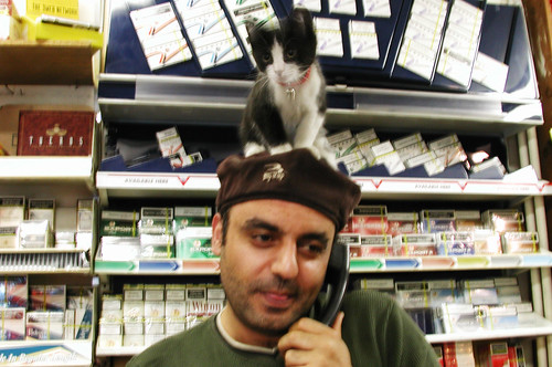 convenience store kitty 3 | by Kevin Steele