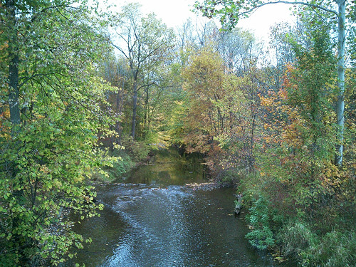 2005 october fall park ray michigan wolcottmillmetropark river