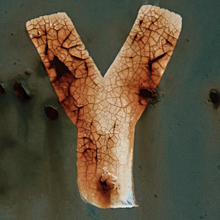 letter Y | by Leo Reynolds