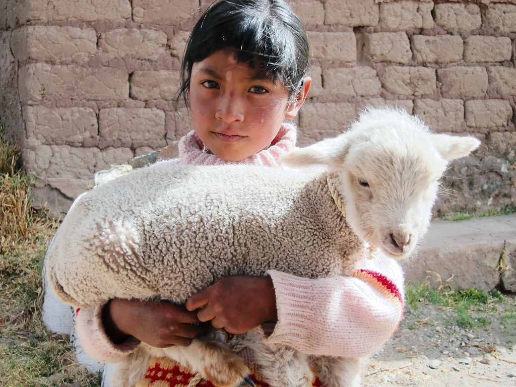 Girl posing with lamb