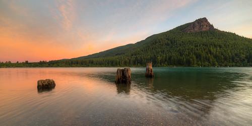 canoneos5dmarkiii pacificnorthwest landscape nature rattlesnakelake samyang14mmf28ifedmcaspherical reflection stumps water morning sunrise johnwestrock washington