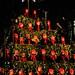 Jedním z adventních atrakcí je i zpívají strom, pějí tam i české děti, foto: Petr Socha - SNOW
