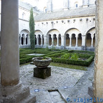 Viajefilos en Abadia de Senanque 005