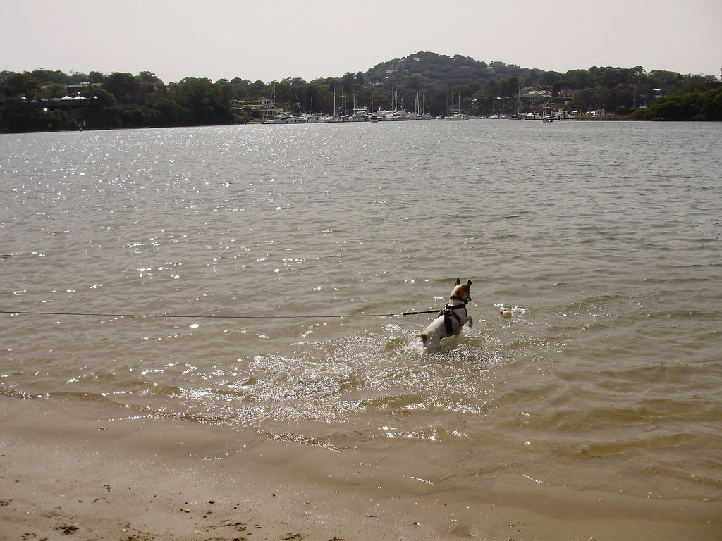 Sally at Rowland Reserve, Bayview NSW